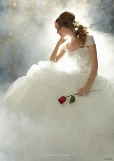 Beauty and the Beast wedding gown-Alfred Angelo (of course). :)