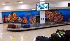 Cayman Islands Airport