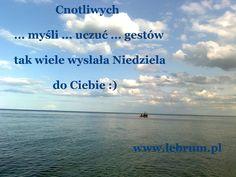 Niedziela Cnotliwych Myśli ... Przemyślenia o poranku : http://pierwszamysl.blogspot.com/ o miłosnych perypetiach : http://iruchna.blogspot.com o szukaniu pracy : http://bez-etatu.blogspot.com/ Widok z okna i komentarz poranka: http://jakimon.blogspot.com