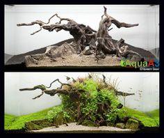http://aquaa3.com.br/2014/06/the-tree-by-norbert-sabat.html