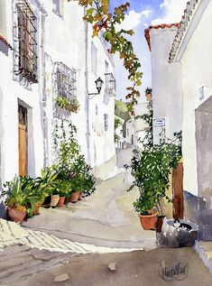 Almeria Painting - Calle De Ohanes by Margaret Merry Almeria Painting - Calle De Ohanes by Margaret Merry Watercolor Landscape Paintings, Watercolor Drawing, Watercolor Illustration, Watercolor Flowers, Painting & Drawing, Building Painting, Watercolor Architecture, Anime Comics, Art Projects
