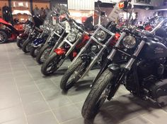 We have a large selection of used Harley Davidson bikes in stock!