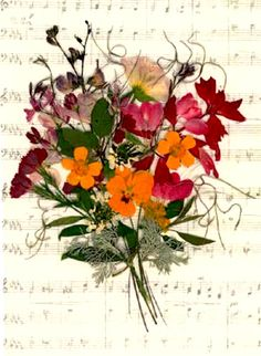 Pressed Flower Victorian Art : Posy : Posy with Music