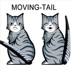 3 styles 2016 Hot Sales Cartoon Funny Cat Moving Tail Stickers Reflective Car Window Wiper Decals car styling auto accessories ** Find out more by clicking the image