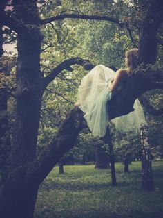 I don't know if I could climb a tree in my dress, but it would be pretty neat to have a shot sitting in a tree!