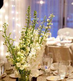 Simple white wedding reception - Simsbury Inn