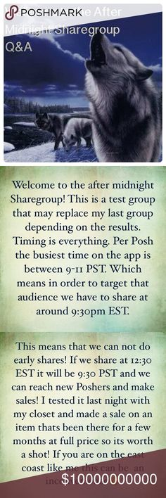 Night Howler Q&A Please read all information above & like this listing. This is a temp group to see if it makes an impact on sales. You can review the Posh Chart above. There are no early Shares. We begin at 10 pm EST. You have between 10pm-2am Est to complete your shares. We are going to share 6 items from each Closet. The closing time is listed in all time zones above. Thank you @janisboutique for the chart. I hope the time is more convenient✅ Accessories