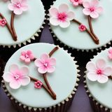 Cherry Blossom Cupcakes Stock Photo - Image: 23689710