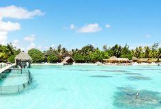 Best of de la plongée en Polynésie