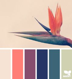 28 Trendy Bedroom Colors Schemes For Couples Design Seeds Scheme Color, Colour Pallette, Colour Schemes, Color Patterns, Color Combos, Color Combinations Home, Website Color Schemes, Design Seeds, Pantone