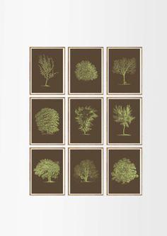 Antique Trees Art Print SET of 9. UNFRAMED. tree wall art, tree home decor, tree prints, tree illustration, botanical prints, botanical art