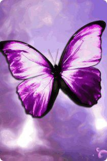 ♥ Purple butterfly! One of our favorites! Thank you @Marianne Burchard Design Gonzalez ONEAND2.COM