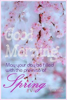Good morning! May your day be filled with the promise of Spring!