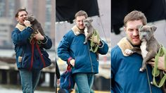 """Tom Hardy Nuzzled a #PitBull Puppy in the filming of """"Animal Rescue"""""""