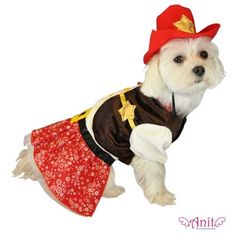 Cowgirl Dog Costume available at http://doggyinwonderland.com/item_1230/Cowgirl-Dog-Costume.htm