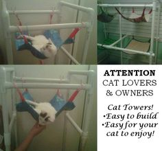 Cat Towers made from pvc pipe, maybe a 5 inch high version for the little dog too :)