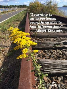 "Why Education Matters: ""Learning is an experience; everything else is just information."" - Albert Einstein"
