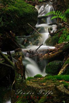 Woodland waterfall at Suvatn. My Images, Pop Up, Norway, Woodland, Scene, Stock Photos, Landscape, Studio, Waterfalls
