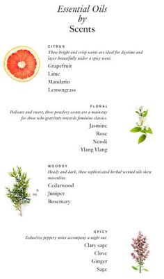 4 Ways to Make Your Own Perfume | http://hellonatural.co/4-ways-to-make-your-own-perfume/