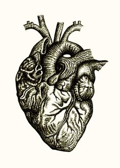 Totally into the heart form right now.