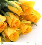 The life sparkling throught yellow Snack Recipes, Snacks, Yellow Roses, Carrots, Vegetables, Spring, Wedding Ideas, Color, Life