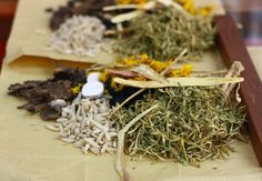 Guide to Chinese medicinal herbs by Season with Spice