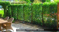 begroeide tuinschermen - Google zoeken