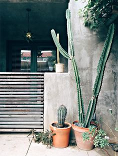 Local city guide—Austin. Hotel San Jose: South Congress. (What we love: sitting on the inner patio and escaping soco for a bit).