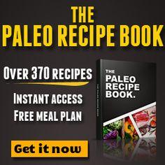 The Paleo Recipe Book - 370 + recipes