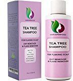 Honeydew Premium Superfood Natural Anti Dandruff Shampoo with Biotin and Rosemary-Coconut and Tea Tree Essential Oils - Promotes Scalp Health and Natural Dandruff Treatment for Men and Women Products