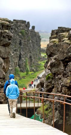 Þingvellir National Park is a must see in Iceland. The sights is popular due to its historic value for Iceland, as it was the first location of Alþingi, the Icelandic parliament which dates back to 930 A.D. It is also a stop on the popular day tour The Golden Circle. The park is lovely in summer, when the flowers blooms in the lava fields.