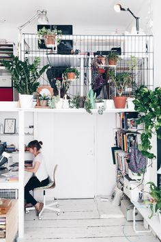 Open plan office/studio loft space with metal grid walls and indoor plants everywhere.