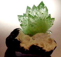 Fleure d'Apophylite verte de Lonavala Mine, Poonah,  ✏✏✏✏✏✏✏✏✏✏✏✏ IDEE CADEAU / CUTE GIFT IDEA  ☞ http://gabyfeeriefr.tumblr.com/archive ✏✏✏✏✏✏✏✏✏✏✏✏ Maharashtra, Inde