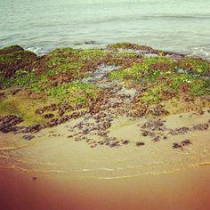 #seashore