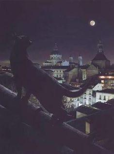 Night city and cat