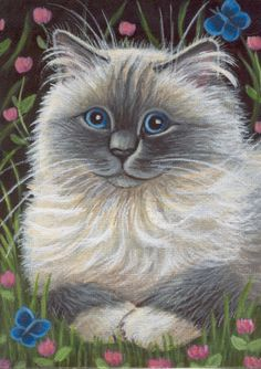 Ragdoll Cat Painting in Acrylics By Marta                                                                                                                                                                                 More