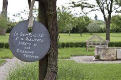 La semplicità è il risultato diretto di una riflessione profonda. #aforismi #gardens #giardinobarbanera