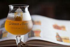 Science of Beer é uma das principais instituições de ensino cervejeiro no Brasil (Foto: Leo Laps/Divulgação)