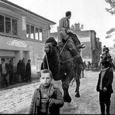 Beykoz'da deve konvoyu (70'ler) #birzamanlar #istanlook #nostalji
