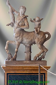 vatican museum animal statues - Google Search