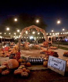Pumpkin Patch Farm, Pumpkin Patch Birthday, Best Pumpkin Patches, Pumpkin Wedding, Autumn Wedding, Halloween Stuff, Halloween Pumpkins, October Events, Farm Fun