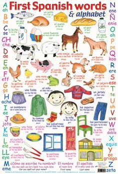 Great first Spanish words plus how to say the Spanish alphabet poster