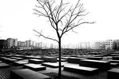 Holocaust Memorial, Berlin (by Tom Holbrook)