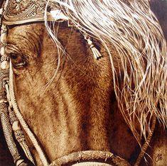 Amazingly Realistic Wood-Burned Portraits of Wildlife