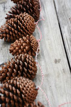 How To Make Pinecone Garland! Pine Cone Christmas Decorations, Diy Christmas Garland, Pinecone Garland, Diy Garland, Primitive Christmas, Rustic Christmas, Natural Christmas, Holiday Crafts, Tired