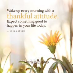 Wake up every morning with a thankful attitude. Expect something good to happen in your life today. — Joel Osteen