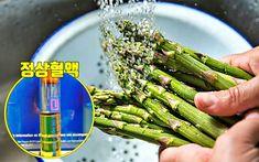 탁해진 '피를 맑게 해주는' 고지혈증에 좋은 음식 6 Asparagus, Vegetables, Food, Studs, Essen, Vegetable Recipes, Meals, Yemek, Veggies