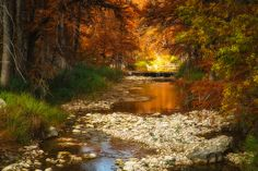 Sabinal River Colors – Vanderpool, Texas