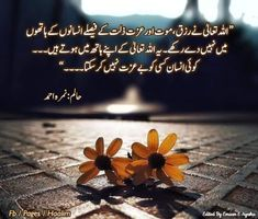 Words Of Hope, Deep Words, Wise Words, Imam Ali Quotes, Urdu Quotes, Islamic Dua, Islamic Quotes, Quotes From Novels, Urdu Thoughts