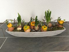 Benodigdheden: langwerpige schaal; steekschuim; mos; 3 bolletjes (narcis, hyacint of druifjes); 5 lege eierschalen; bosje ranonkels (of tulpjes, anemonen, viooltjes etc.); takjes groen bv. buxus; grillige tak van kronkelhazelaar of -wilg; 3 tandenstokers voor het vastzetten van de bloembollen